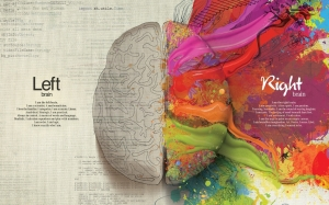 brain-1