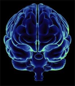 Brainhemispheres1