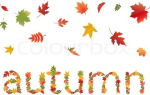 AA3174130-298809-autumn-leaves-in-form-of-word-isolated-on-white-background-vector-illustration