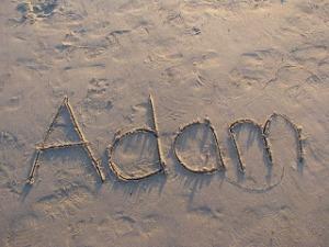 Adam's name