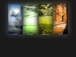 AFour_Seasons_Wallpaper_by_liquidplasmaflow