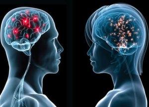 Amale-vs-female-brain