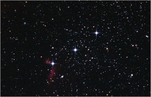 Aorions-belt-nc-janis-or-jp