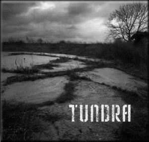 tundra_lrg