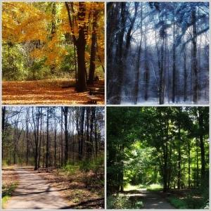 Afour-seasons