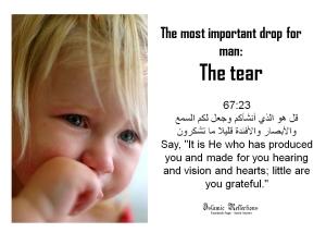 Aquran110911-tears