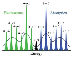 AVibration-fluor-abs