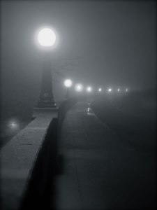 into-the-mist_01