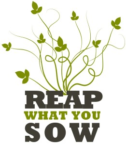 reap-what-you-sow-e1313292782179