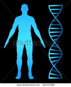 astock-photo--d-concept-for-genetic-health-research-and-the-human-genome-201317909