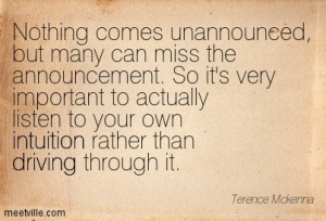 AQuotation-Terence-Mckenna-intuition-driving-Meetville-Quotes-64541
