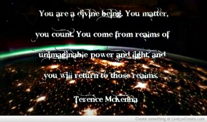 Aquote_terence_mckenna-520192