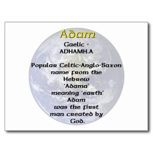 adam_name_meaning_post_cards-r0b733f4838274479b385df808b599ff3_vgbaq_8byvr_512