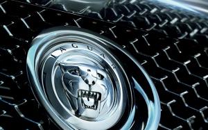 jaguar-c-xf-concept-logo-wallpapers-1440-900