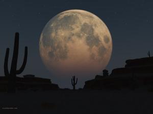 desertmoon1600