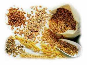 Wwhole-grains