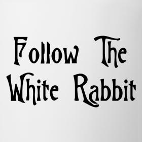 Zalice-in-wonderland-or-the-matrix-follow-the-white-rabbit_design