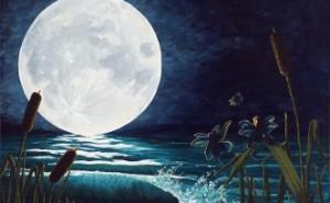 Aflight-of-the-moon-faries-deborah-ellingwood-332x205