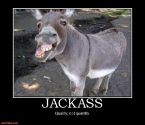 Jjackass-donkey-demotivational-posters-1330543130