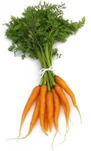 NP-carrots