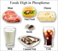 QPhosphorus-Foods