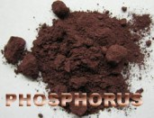 Qphosphoruswwefwef