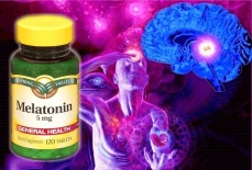 01 Melatonin Pineal Gland