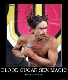 blood-sugar-sex-magic-demotivational-poster-1216867362