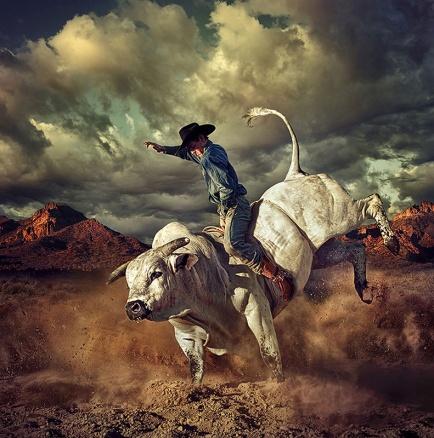 Bull_Rider_BLOG1