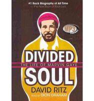 divided-soul-9781433202773-lg
