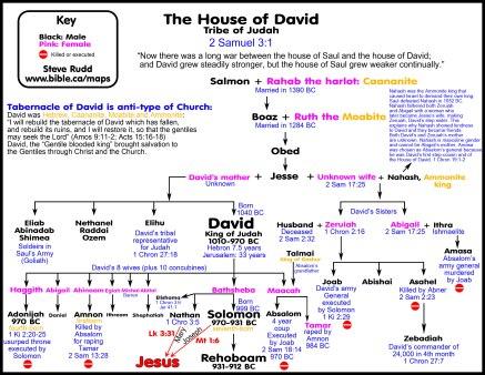 genealogy-house-of-david-salmon-rahab-boaz-ruth-obed-jesse-eliab-abinadab-shimea-nethanel-raddai-ozem-elihu-david-zuruiah-abigail-joab-abishai-asalel-zebadiah