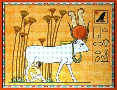 hathor-holy-cow