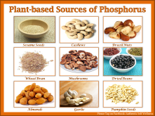 Hplant-based-sources-of-phosphorus