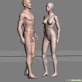 Human_man_and_women_anatomy_3d_model