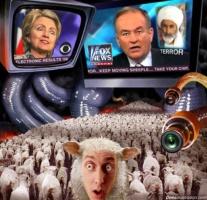 L sheep sLeep sLap dogs sick EL $La eve s