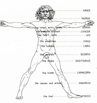 name-of-body-parts-of-man_4