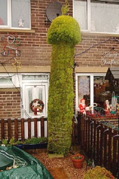 JOKER ALAN PARKIN 47 CAREFULLY PRUNED AND SHAPED THE THE TEN FOOT TALL CONIFER IN HIS FRONT GARDEN TO LOOK LIKE A GIANT PHALLUS. PIC FROM THE BARNSLEY CHRONICLE