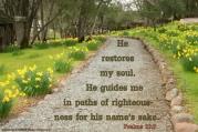 psalms23-3