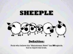 Sheep EL