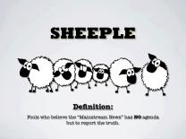 Sheeple fools who believe the mainstream news has no agenda but to report the truth