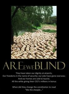sheeple-wake-up-america-demotivational-posters-1312023415