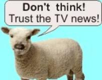 sheeple1L