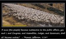 sheeple1LLL