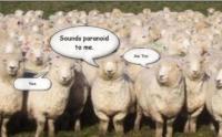 Stupid-Sheeple-107853071281