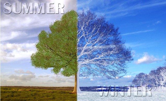 summer__winter_scene_by_melameena