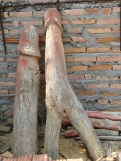 thaïlande phallus homme femme (1)