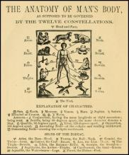 The-Anatomy-Of-Mans-Body-As-Supposed-T-Be-Governed-By-The-Twelve-Constellations