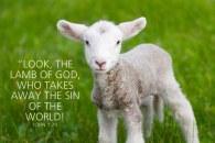 W151212A4-Names-of-Jesus--Lamb-of-God