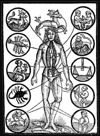 zodiac-anatomy