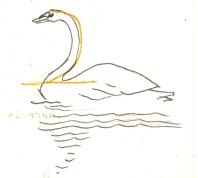 20-swan-beis-copy